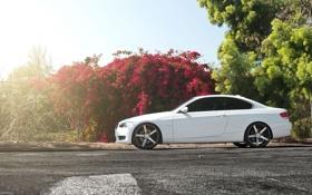 Обои бмв, купе, BMW, 3 series