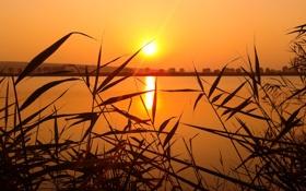 Картинка небо, листья, солнце, закат, озеро, река, холмы