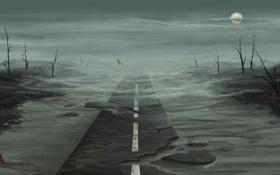 Картинка дорога, ночь, луна, пустош