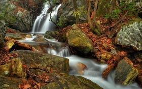 Картинка осень, камни, водопад, речка