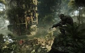 Обои город, люди, апокалипсис, Crysis 3