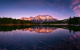 Обои лес, свет, отражения, горы, озеро, Германия, Бавария