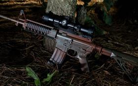 Обои винтовка, карабин, штурмовая, природа, оружие