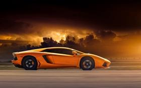 Обои оранжевый, Lamborghini, профиль, ламборджини, orange, LP700-4, Aventador