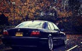 Обои осень, листья, фары, тюнинг, BMW, Бумер, БМВ