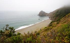 Картинка море, природа, фото, побережье, США, кусты