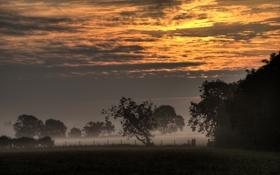 Картинка поле, небо, пейзаж, закат, природа, туман
