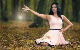 Обои paola, платье, лес, листья, осень
