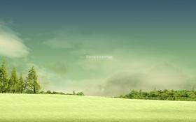 Обои поле, лето, деревья, настроение, надпись, silence is a privelege