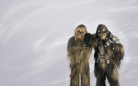 Картинка Star Wars, звездные войны, мохнатые, Чубакка, Чуи, вуки, фото на память
