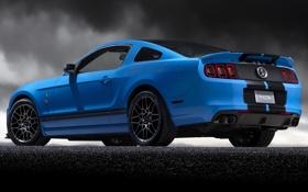 Обои синий, Mustang, Ford, Shelby, GT500, мустанг, форд