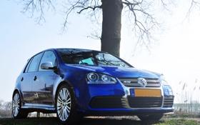 Обои небо, синий, дерево, Volkswagen, гольф, R32, Golf