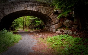 Картинка зелень, трава, мост, природа, обочины