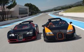 Обои Roadster, Бугатти, Bugatti, Вейрон, Veyron, суперкар, передок