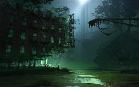 Обои свет, ночь, город, болото, Crysis 3