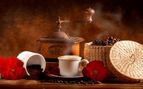Картинка цветы, коробка, кофе, чашки, кофейные зёрна, кофемолка