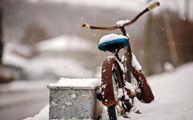 Обои снег, велосипед, улица