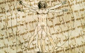 Обои leonardo da vinci, human body, paper effect