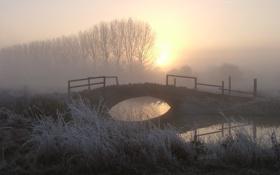 Картинка мост, туман, утро