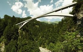 Картинка лес, горы, мост, высота
