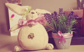 Обои цветы, игрушка, заяц, горшок, бант