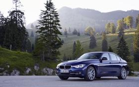 Картинка бмв, BMW, F30, Sport Line, 2015, 340i