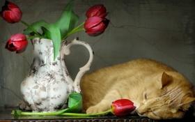 Картинка кошка, стиль, тюльпаны