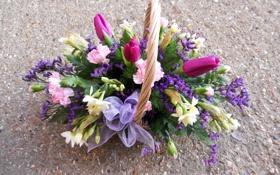 Обои фото, Цветы, Тюльпаны, Корзинка, Букет, Нарциссы, Гвоздики