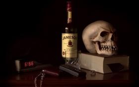 Обои skull, still life, Hell of a Morning