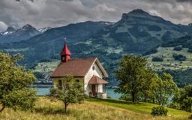 Обои деревья, горы, Швейцария, Альпы, часовня, Switzerland, Alps