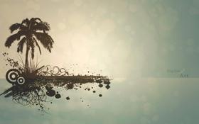 Картинка абстракция, пальма, digital art