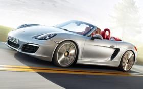 Картинка car, обоя, скорость, автомобиль, sportcar, 2012, porsche