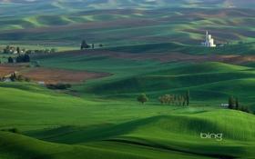Обои bing, пейзаж, природа, пейзажи, поле, зелень, луга