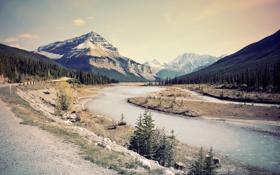 Обои дорога, лес, горы, река