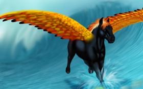 Обои лошадь, золотые, черная, вода, брызги, арт, крылья