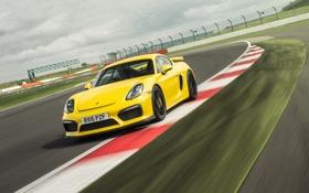 Картинка желтый, GT4, кайман, Cayman, Porsche, порше