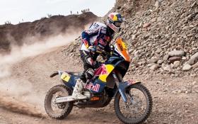 Обои Камни, Мотоцикл, Мото, Red Bull, Rally, Dakar, Дакар