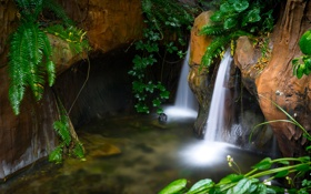 Картинка листья, скалы, водопад, поток
