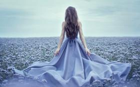 Обои природа, шлейф, платье, девушка. спина