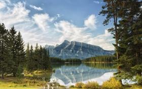 Картинка небо, деревья, горы, озеро, стол, скамья