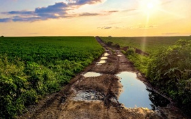 Обои дорога, поле, лужа