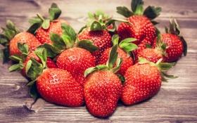 Обои ягоды, клубника, красные, fresh, спелая, strawberry, berries