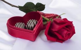 Обои подарок, роза, шоколад, конфеты, красная, коробочка