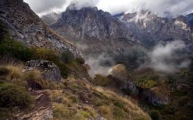 Картинка пейзаж, горы, туман