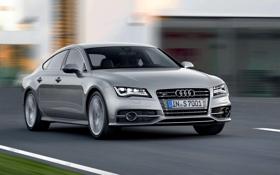 Обои Audi, Авто, Серый, Серебро, Капот, Фары, Передок