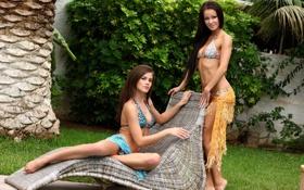 Картинка купальник, пальма, девушки, модели, girls, melisa, caprice