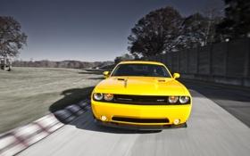Обои дорога, авто, фото, обои, скорость, тачки, Dodge