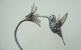 Картинка цветок, металл, птица, колибри