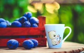 Обои лето, стол, рисунок, размытость, мишка, чашка, сливы