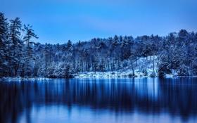 Картинка зима, снег, деревья, озеро, парк, Haviland Cove Park, Glens Falls